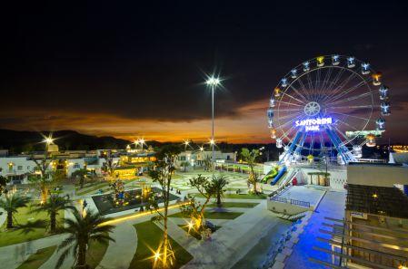 Ferris Wheel 33 (4)